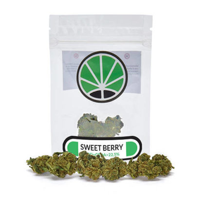 sweetberry-weed