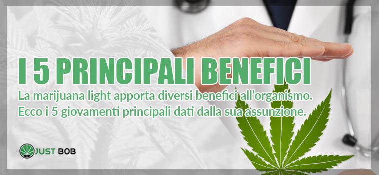 benefici della marijuana light