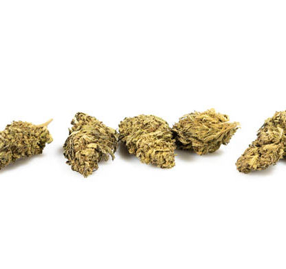 Fiori Cannabis Light CBD DO SI DOS - JustBob!
