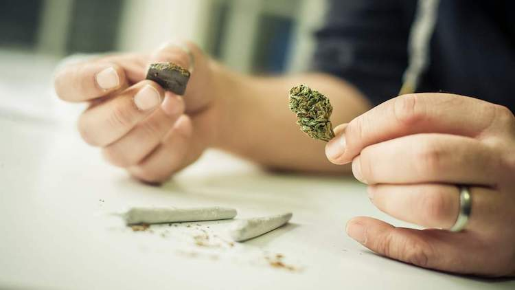 hashish e marijuana differenze realie e sostanziali