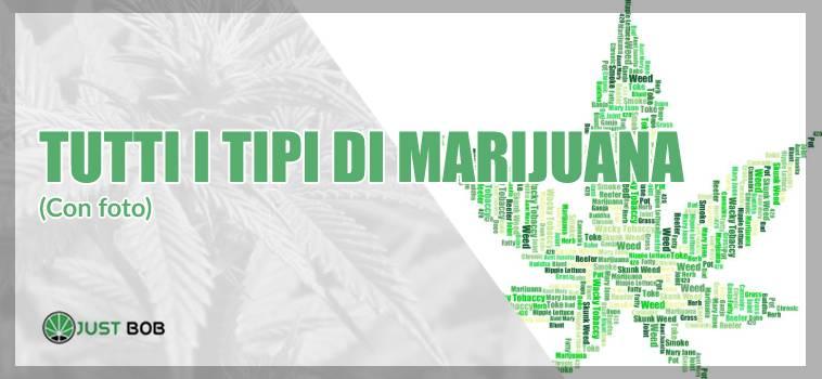 tutti i tipi di marijuana