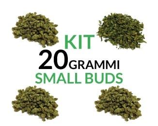 Kit 20 grammi Small Buds Justbob.it