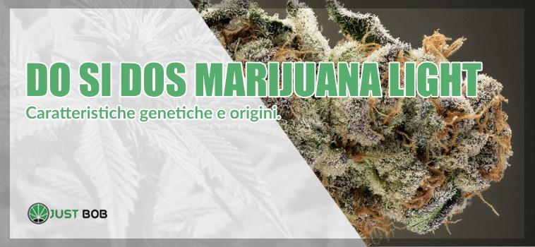 marijuana light do si dos origini
