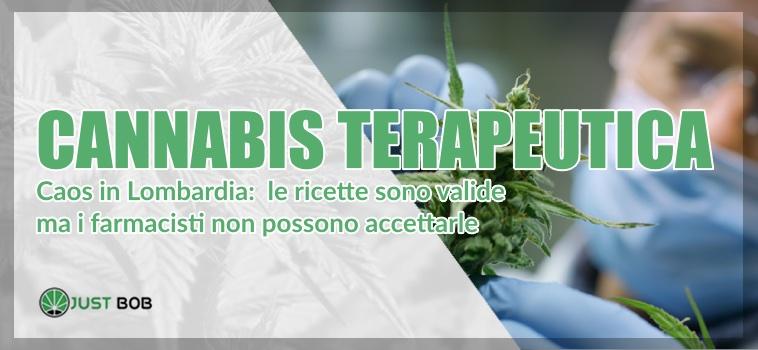 cannabis terapeutica caos in Lombardia