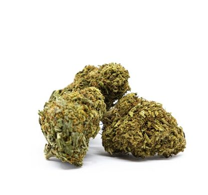 Orange Bud marijuana legale Italia
