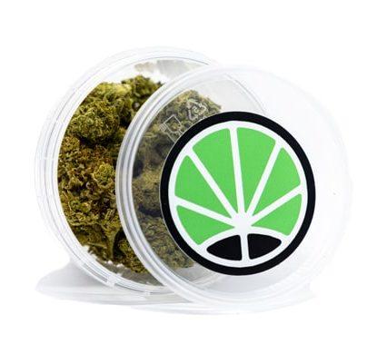 do si dos weed marijuana light italia