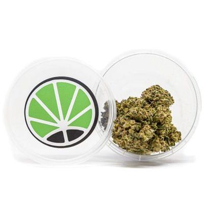 gorilla glue cannabis legale
