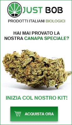Cannabis Legale Shop
