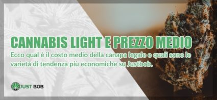 cannabis light prezzo