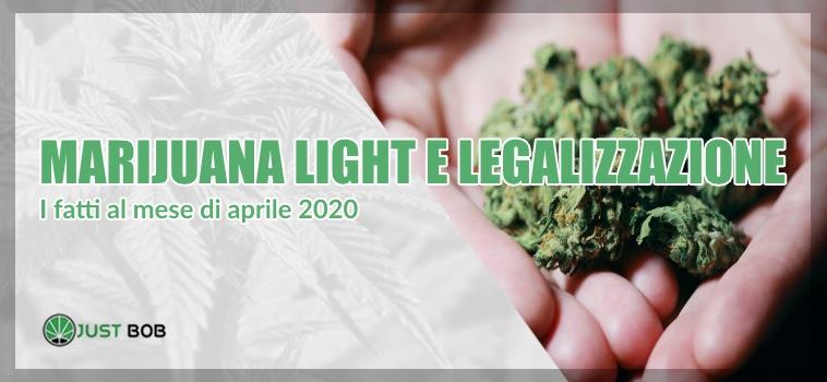 marijuana light aprile 2020