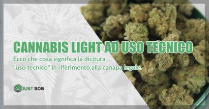 Canapa light ad uso tecnico