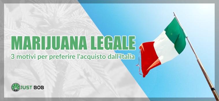 acquistare marijuana legale italia