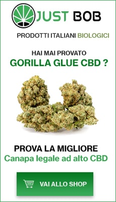 Banner Justbob shop di canapa light cime di Gorilla Glue