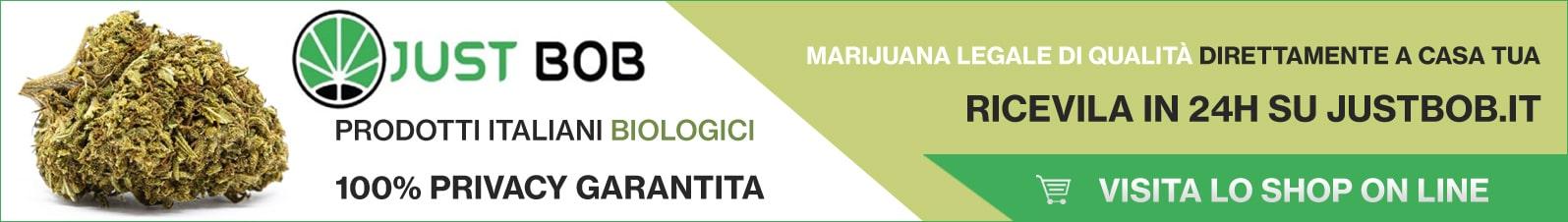 Banner Justbob marijuana legale di qualità direttamente a casa tua